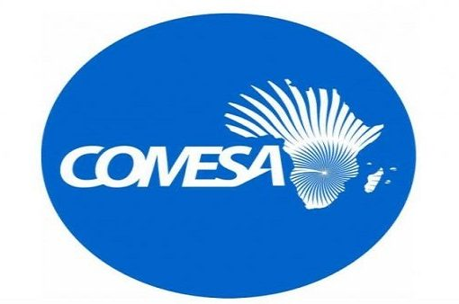 COMESA urges value addition for Africa's mineral exports
